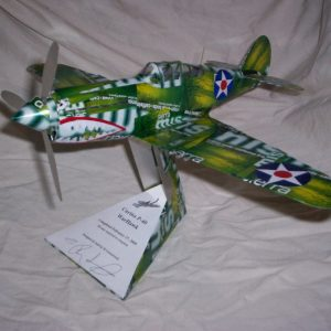 soda can model P-40 Warhawk